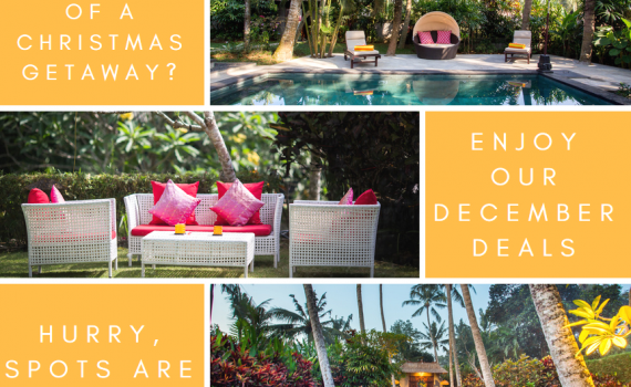 Dreaming of a Christmas getaway? Enjoy our December Deals!
