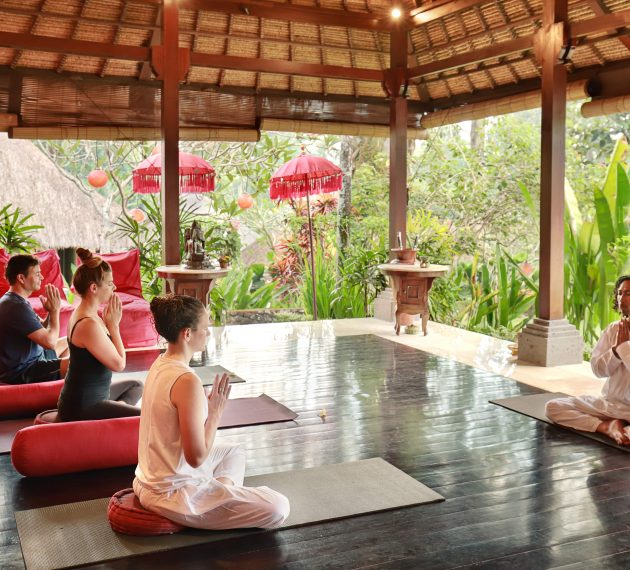The Science and Art of Holistic Rejuvenation: Mind, Body, Heart & Spirit gallery image